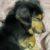 zono さんのプロフィール写真